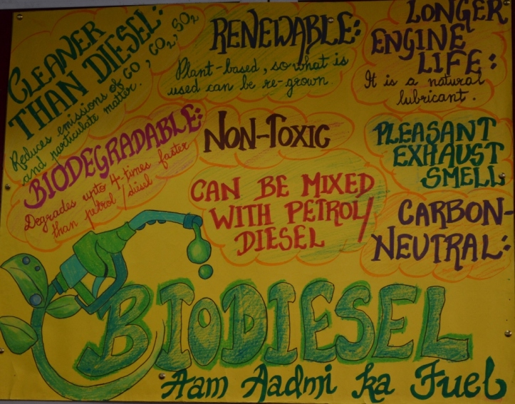 Some of the important things about biodiesel