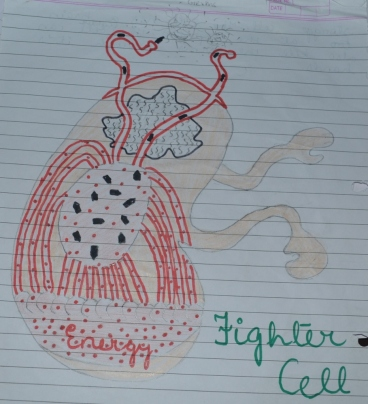 "Madiha's design for a ""fighter cell"""