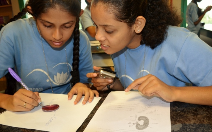 Naaz and Nidhi identify and label the internal structures.