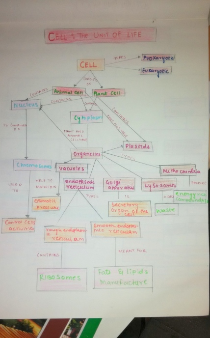 A concept map with connecting words and phrases to link the concepts to each other